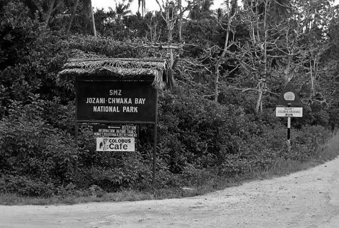 A Quick Walkthrough - Jozani Chwaka Bay National Park