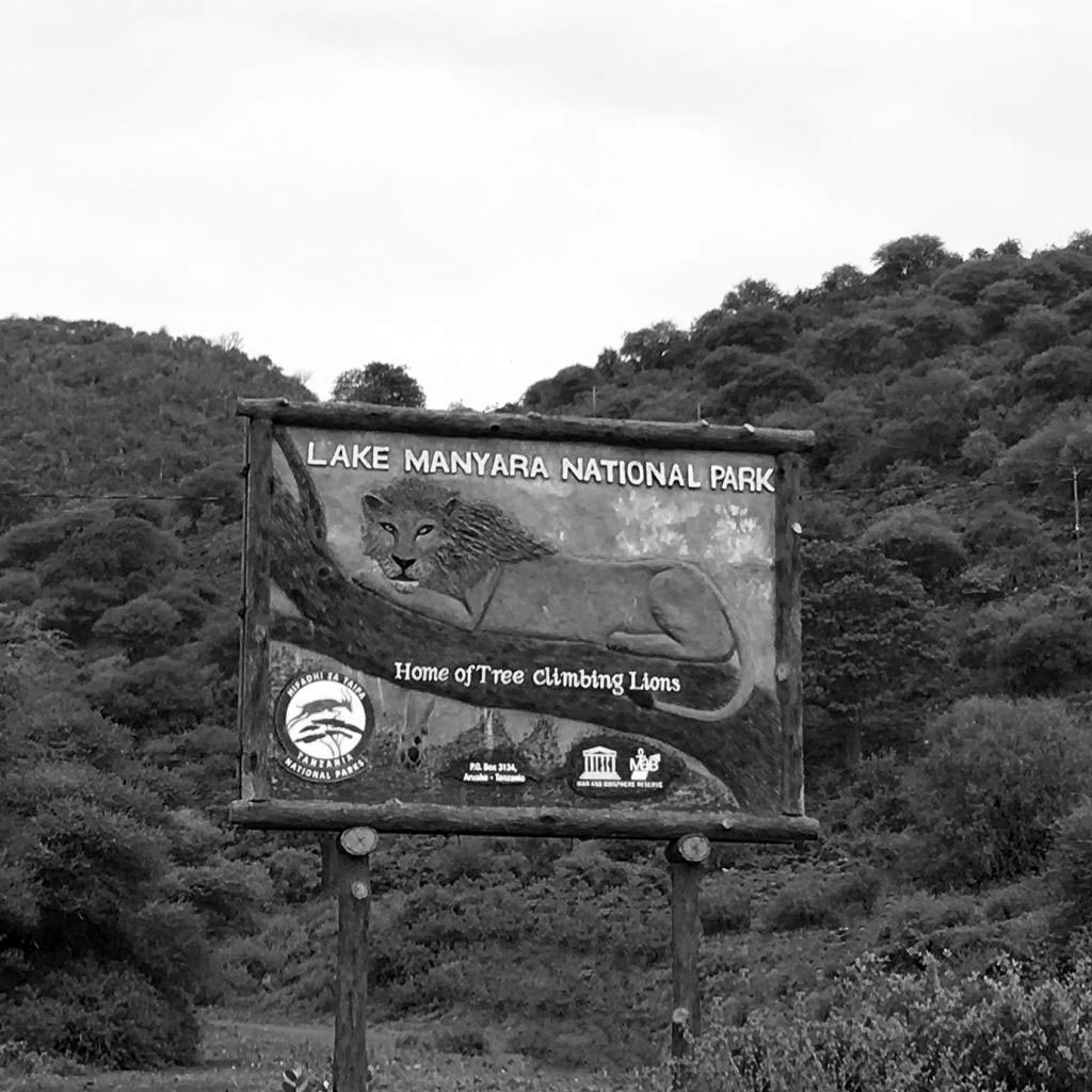 Greenery as you are approaching to Lake Manyara National Park