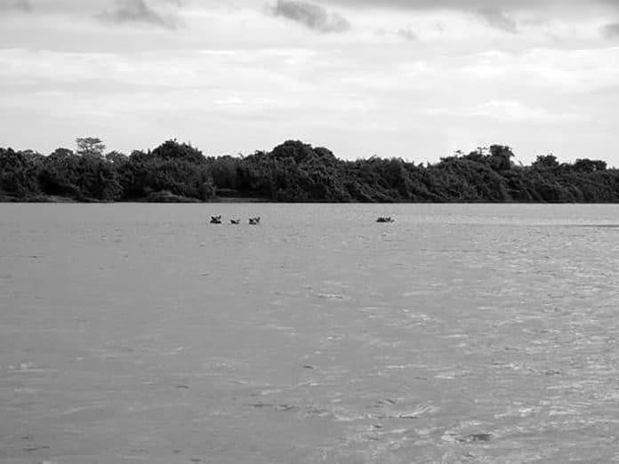 Quick Overview of the Ruvuma River in Tanzania
