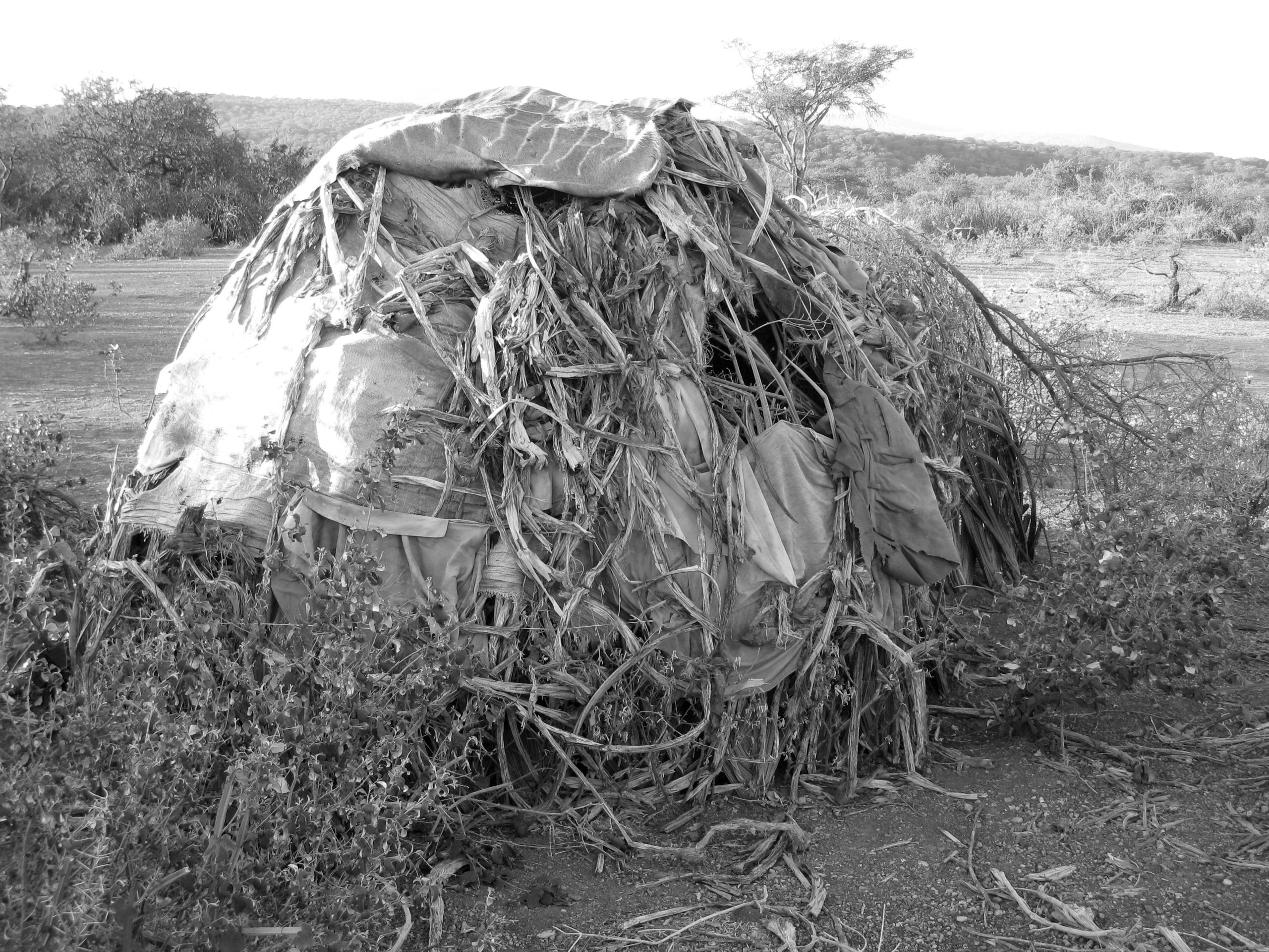 The Hadza tribe settlement style