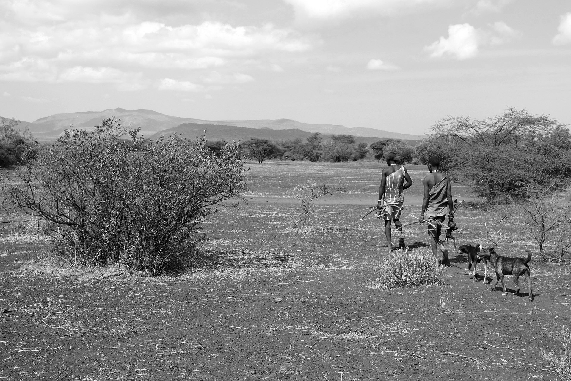 Two Hadza tribe men coming back home from hunting